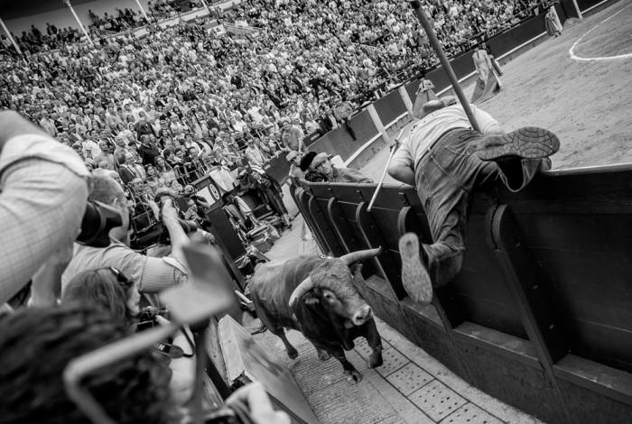 Novillada en Las Ventas. 26 de mayo 2015